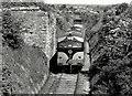 Gypsum train near Nobber