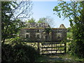 Ruined house at Anaglog, Co. Louth