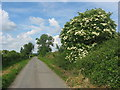 Country road at Mullaghey, Kells