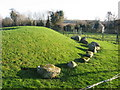 Passage tomb, Townleyhall, Co. Louth