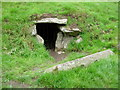Entrance to South Passage Dowth Megalithic Tomb
