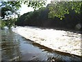 Boyne Weir at Dollardstown