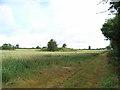 Mound Near Rosnaree
