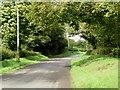Back road in Brownstown, Co. Meath