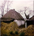 Thatched cottage at Kennetstown, Co. Meath