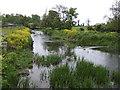 River Nanny at Beaumont Bridge - downstream