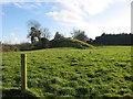 Mound at Lisdornan
