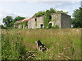 Ruined farmhouse at Julianstown, Co. Meath