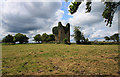 Castles of Leinster: Martinstown, Westmeath