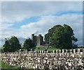 Bective Abbey - a ruined fortified abbey on the Boyne
