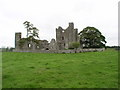 Bective Abbey