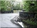 Entrance to Balrath Wood, Near Kentstown, Co. Meath