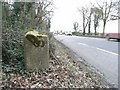 Milestone on the N2 at Flemingstown, Co. Meath