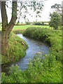 Delvin River at Gibblockstown, Co. Meath
