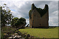 Castles of Leinster: Martinstown, Westmeath (2)