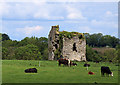 Castles of Leinster: Newhaggard, Meath