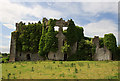 Castles of Leinster: Tremblestown, Meath (1)
