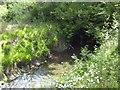 Skane River, Co Meath