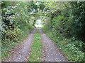 Kilwarden farm track