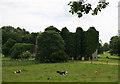 Castles of Leinster: Summerhill, Meath