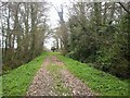 Pathway to Ballymaglasson Church, Co Meath