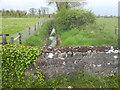 Stream, Portan, Co Meath