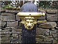 Pump, Co Meath (detail)