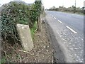 Milestone on the N2 at Wotton, Co. Meath