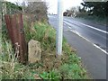Milestone south of Ashbourne, Co. Meath