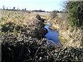 Stream, Peacockstown, Co Meath