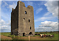 Castles of Leinster: Rattin, Westmeath (2)