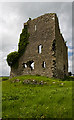 Castles of Leinster: Carrick, Kildare (3)