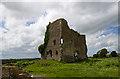 Castles of Leinster: Carrick, Kildare (2)