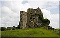 Castles of Leinster: Carrick, Kildare (4)