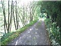 Royal Canal Towpath west of Enfield, Co. Meath
