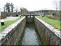 Royal Canal 14th Lock & Jackson's Bridge, Co. Kildare