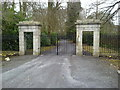 Gate, Ballymaglasson, Co Meath