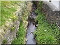 Small Stream, Kilclone, Co Meath