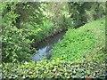 Pinkeen River, Co Meath