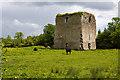 Castles of Leinster: Kinnafad, Kildare