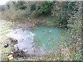 Chalybeate Spring, Leixlip, Co. Kildare