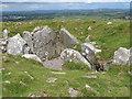 A satellite tomb at Carnbane East