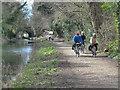 The Boyne Canal at Navan