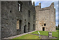 Castles of Leinster: Athlumney, Meath (3)