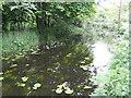 Channel of the Boyne