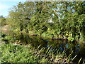 The Boyne Canal
