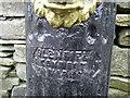 Water pump, Co Meath, detail
