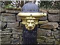 Pump, Co Meath (detail)