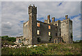 Castles of Leinster: Athcarne, Meath (1)