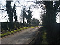 Henge at Micknanstown, Co. Meath